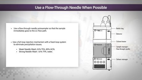 HILIC Columns Tips & Tricks: Use a Flow Through Needle When Possible