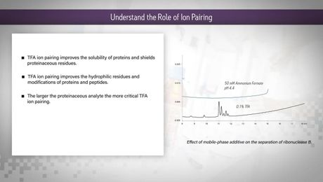 HILIC Columns Tips & Tricks: Understand the Role of Ion Pairing