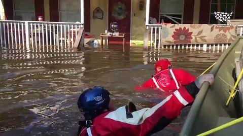 Hurricane Harvey -  Animal Rescue Team Arrives Just in Time