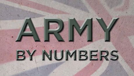 The British Army: By Numbers
