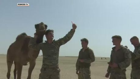 Riflemen Feel The Heat In Exercise Desert Warrior