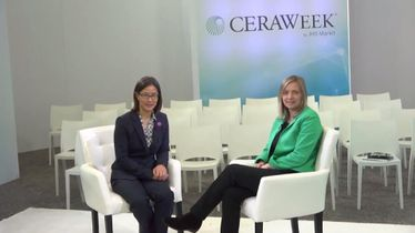 Interview with Carolyn Seto and Helen Greiner