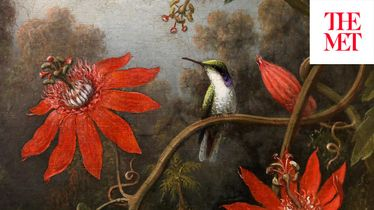 THE ARTIST PROJECT: Alexis Rockman on Martin Johnson Heade's Hummingbird and Passionflowers