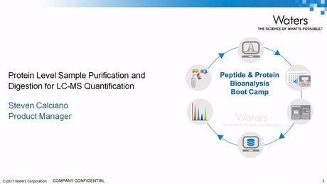 Protein Level Sample Purification and Digestion for LC-MS Quantification