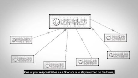 Sponsoring & Training Responsibilities