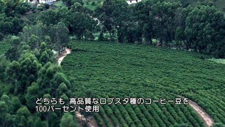【プロテインアイスコーヒー】ルイジ博士による製品紹介動画