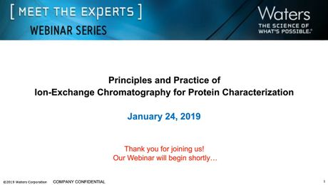 Principles and Practice of Ion-Exchange Chromatography for Protein Characterization