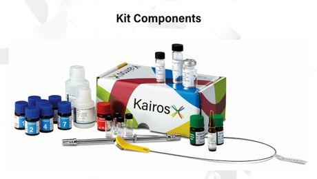 Kairos Amino Acid Kit -Manual low-throughput how to video