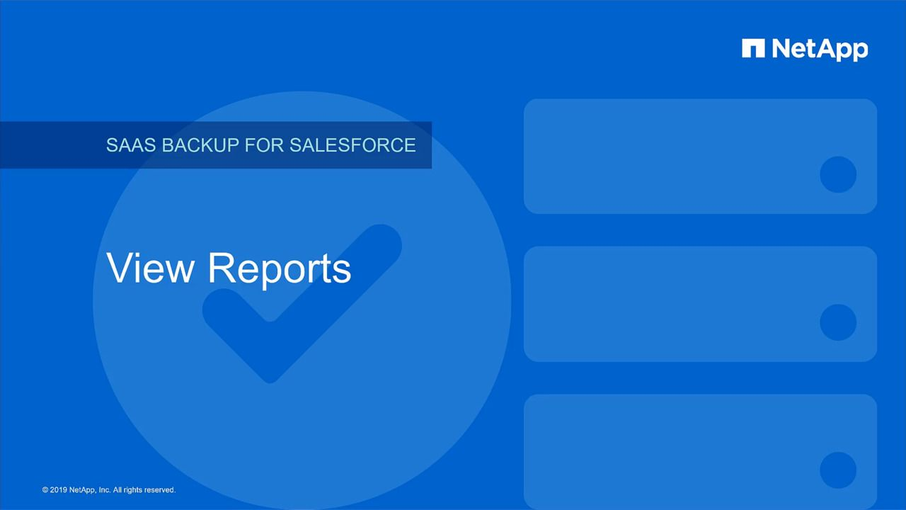 View Reports in NetApp SaaS Backup for Salesforce