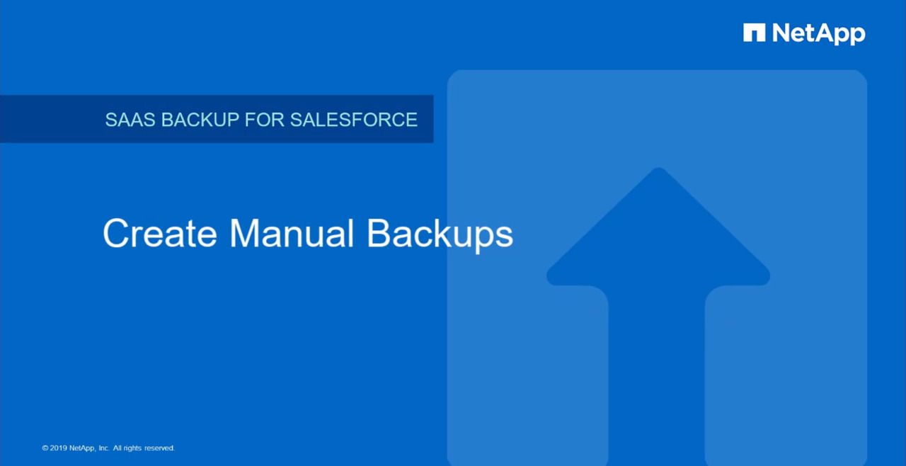 Create Manual Backups in NetApp SaaS Backup