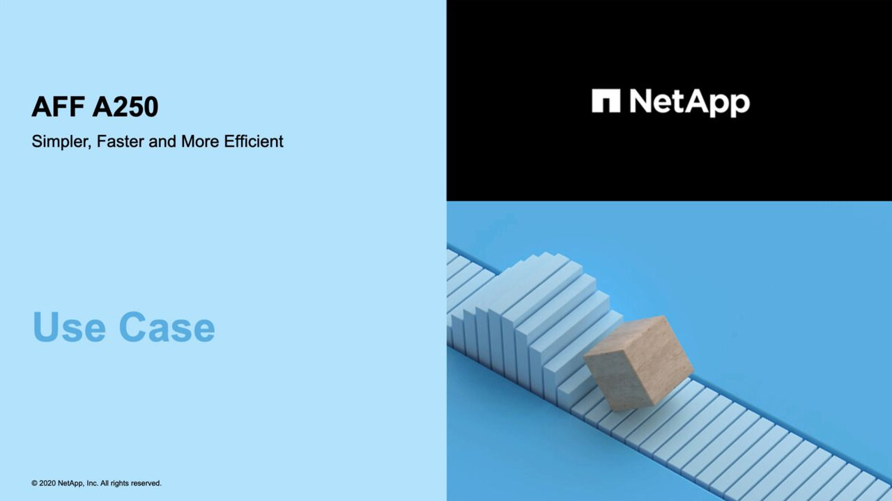NetApp AFF A250 - Use Case