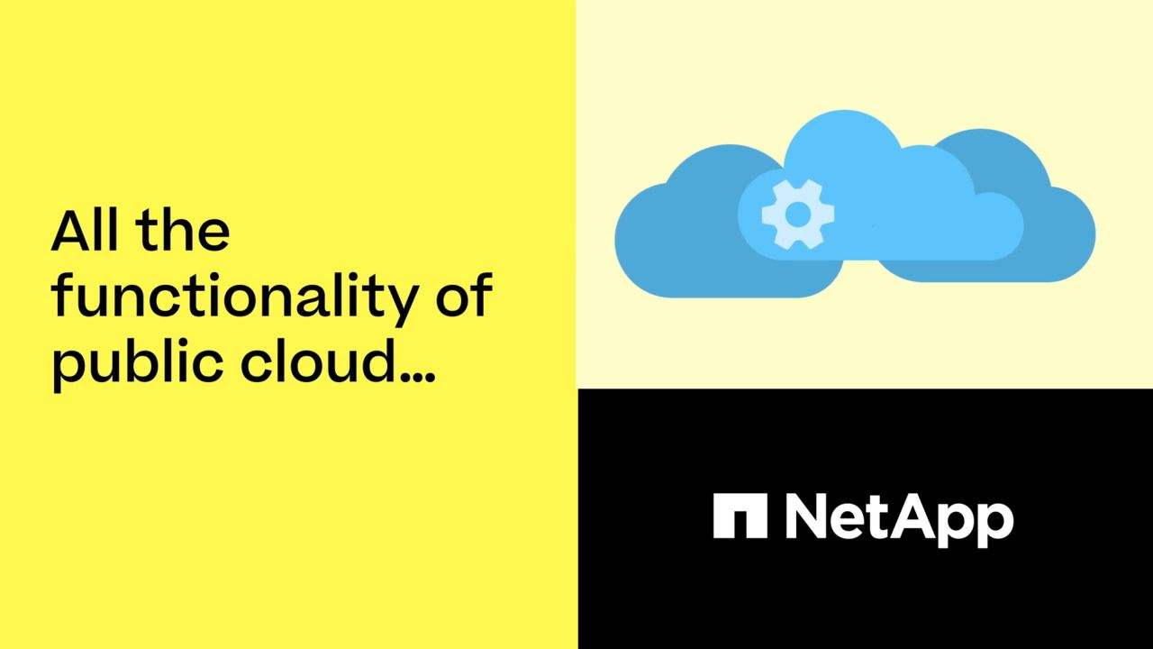 All the Functionality of the Public Cloud