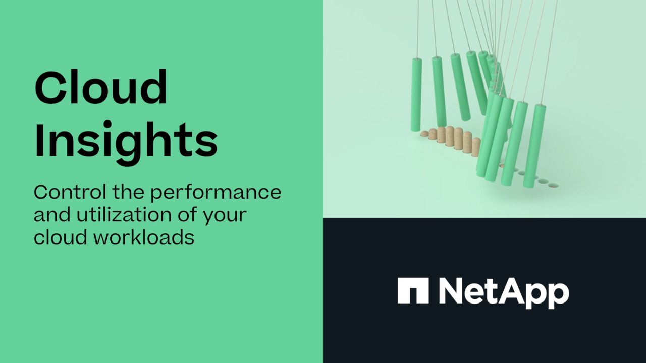 NetApp Cloud Insights