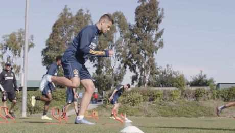 The LA Galaxy's and Sports Nutrition Game Plan