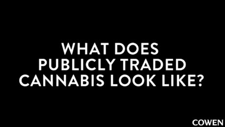 What Does Publicly Traded Cannabis Look Like?