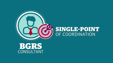 The BGRS Consultant and You