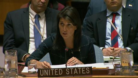 Remarks at a UN Security Council Meeting on Chemical Weapons Use in Syria