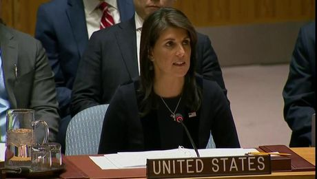 Remarks at an Emergency UN Security Council Briefing on Chemical Weapons Use by Russia in the United Kingdom