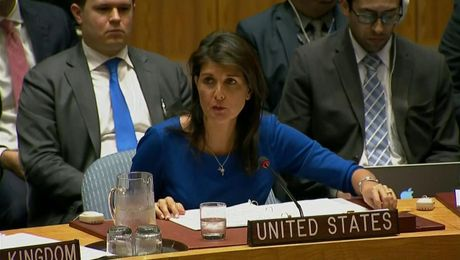 Remarks at an Emergency UN Security Council Meeting on Syria