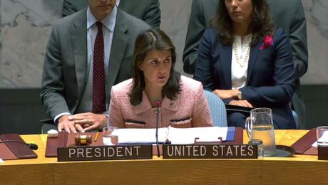 Remarks at a UN Security Council Briefing on the Situation in Syria
