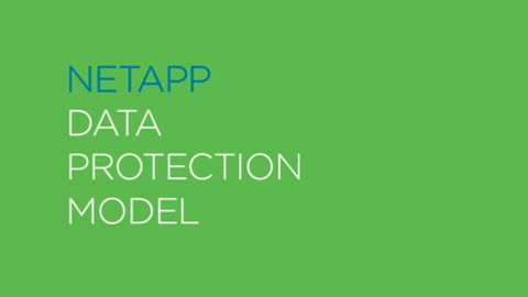 NetApp Data Protection Model Technomerical