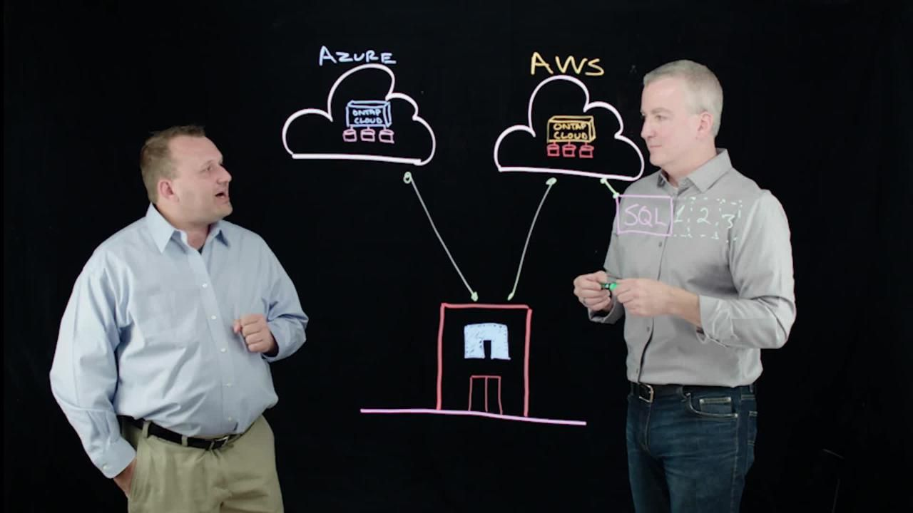 Embrace DevOps with NetApp ONTAP Cloud