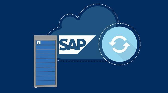 Hybrid Cloud Data Management Solutions for SAP