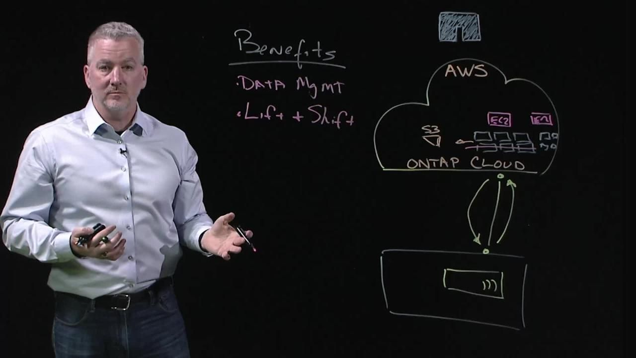 ONTAP Cloud for AWS