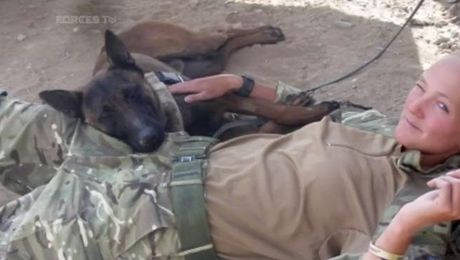 SAS Veteran Launches Campaign To Save Army Dogs From Being Put Down