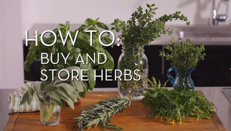 Buy and Store Herbs | Cooking How To | Food Network Asia