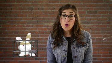 Mayim Bialik Debunks Animal Testing in 3 Steps