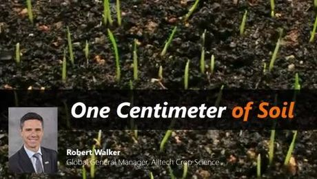 Robbie Walker - One Centimeter of Soil