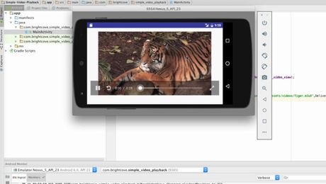 DwAndroidSDK - 9 - Getting a video from remote server