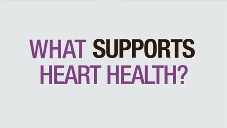 What Supports Heart Health?