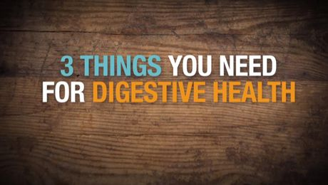 3 Things You Need for Digestive Health