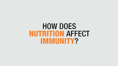 How Does Nutrition Affect Immunity?