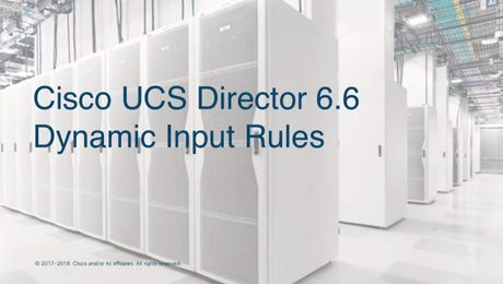 Cisco UCS Director Dynamic Input Rules