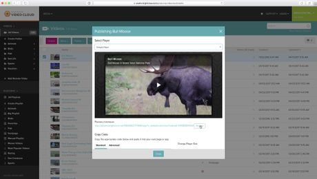 Publishing Videos Using the Media Module