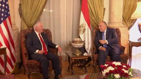 Secretary Tillerson meets with Egyptian Foreign Minister Shoukry