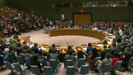 Remarks at a UN Security Council Open Debate on Children and Armed Conflict