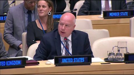 Remarks at a UN Security Council Arria-Formula Meeting on Israeli Settlements